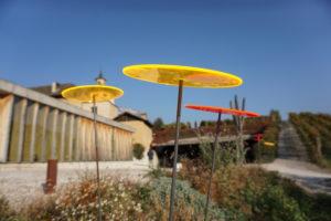 Cazador-del-sol collettori del sole