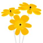 Nea . giallo